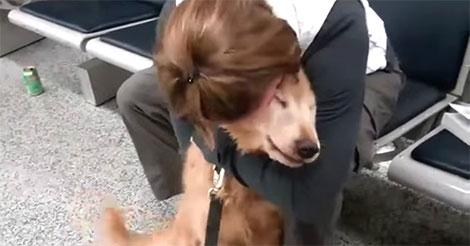 chien-retrouve-sa-maman-depuis-des-mois